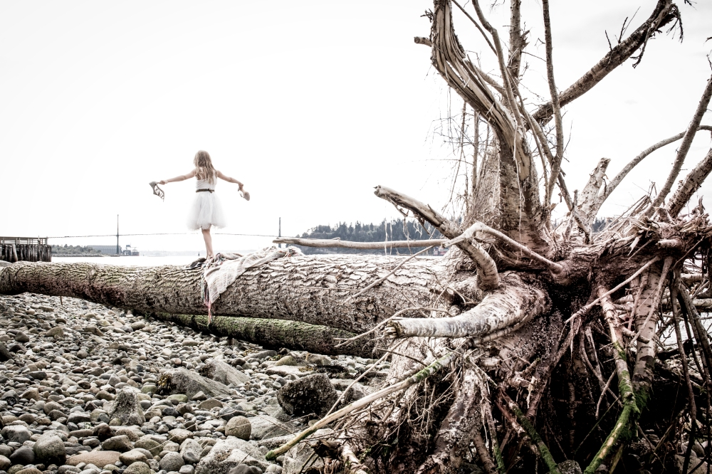 DriftwooddundaraveCL-0398