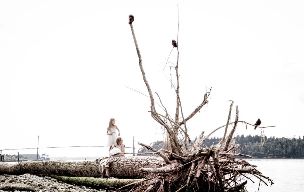 DriftwooddundaraveCL-0592