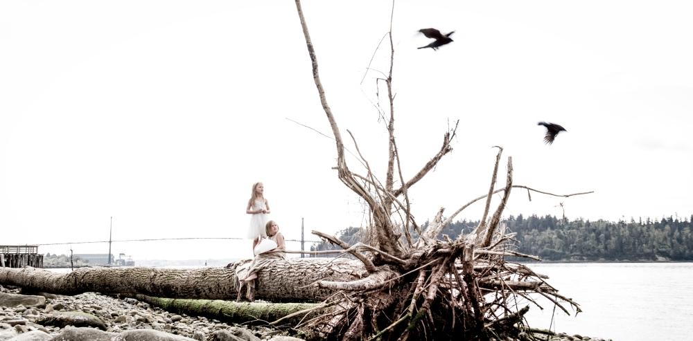 DriftwooddundaraveCL-0600